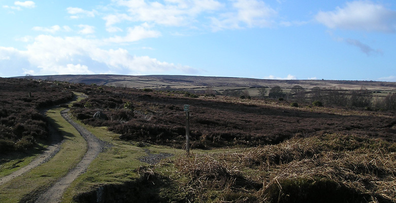 Broomhead Moor path