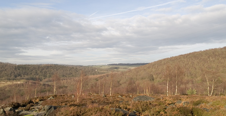 Wharncliffe Chase
