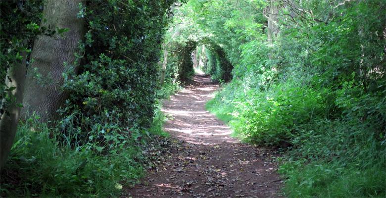 Oxspring path