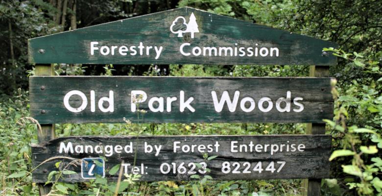 Old Park Woods